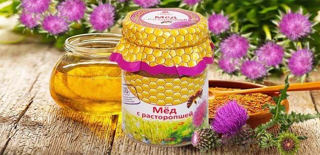 мед расторопши