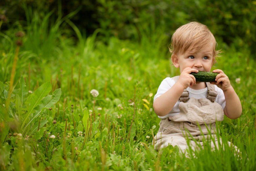 ребенок ест огурец
